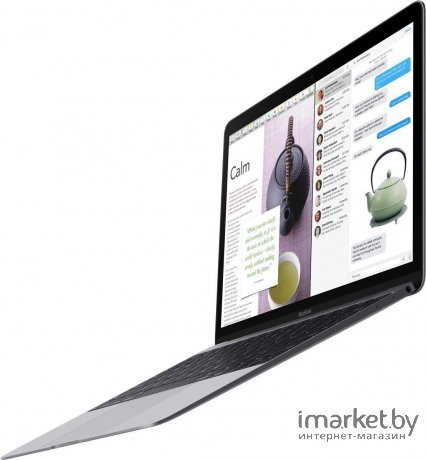 Ноутбук Apple MacBook [MLHE2]